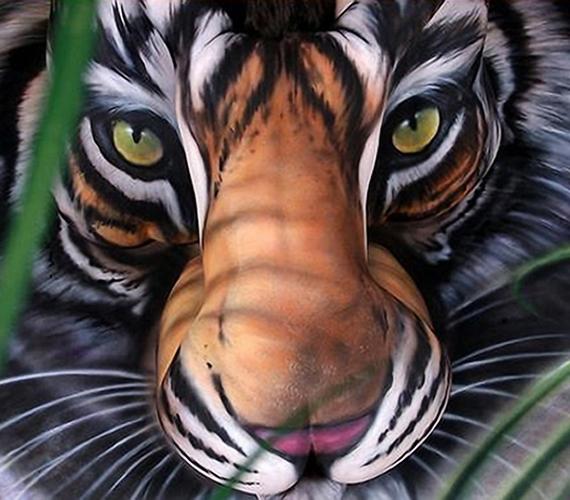 Tigris, Craig Tracy munkája.