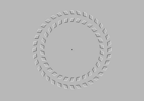 Fókuszálj a középső fekete pontra, és a fejeddel felváltva közeledj és távolodj a monitortól. Mozognak a körök?