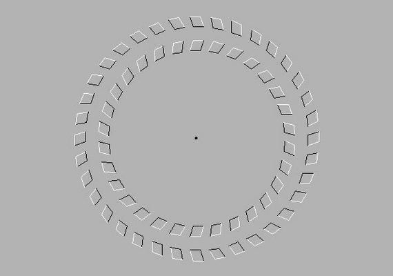 Nézd a középen lévő fekete pontot, és mozgasd a fejed előre-hátra!