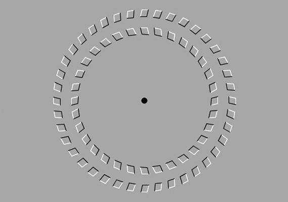 Nézd legalább egy percig a középső kis fekete pöttyöt, és meglátod, a körök ellentétes irányba forogni kezdenek.