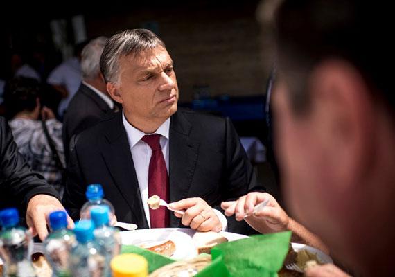 Orbán Viktor nem titkolja ízlését, még a sajtó előtt is megengedi magának a koleszterindús falatokat. Csak semmi flancolás, a kolbász műanyag tányérról és műanyag evőeszközökkel igazán jóleső. Egy hajtós kampány azonban fittséget követel mindenkitől, így a kormányfő az október 12. előtti időszakra félretette az egészségtelen ételeket és italokat.