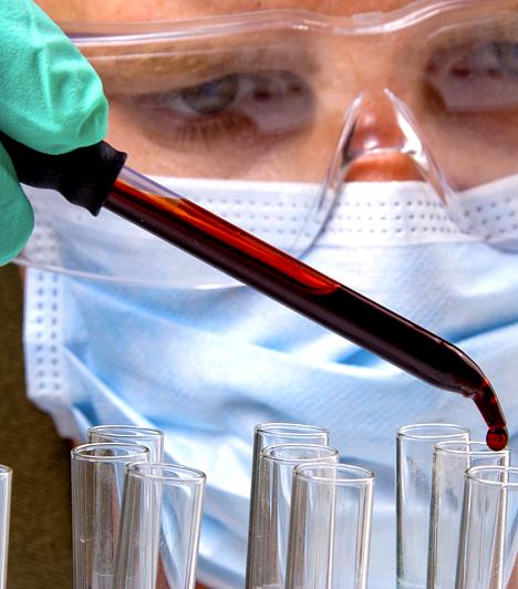 Az AIDS vírusát szándékosan terjesztettékSokan tartják úgy, közöttük elismert tudósok is, hogy az AIDS vírusát az amerikai kormány fejleszthette ki népirtás céljából, azért, hogy a biológiai fegyver révén a fekete népességet megtizedelje. Az állítások szerint mindez olyan szervezetek együttműködésével történt, mint a rettegett Klu-Klux-Klán.Kapcsolódó cikk:Ők fejlesztették ki az AIDS vírusát? - A rettegett titkos társaság »