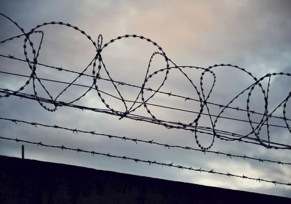 """4 méter magas, 175 kilométer hosszú kerítés megépítését jelentette be Szijjártó Péter külügyminiszter szerdai sajtótájékoztatóján. A kormány ettől reméli, hogy feltartóztathatja a szerb határon a menekülteket. Belgrádban nem örülnek a tervnek, Aleksandar Vučić miniszterelnök azt mondta, ők nem emelnek kerítést a határaikra, mert """"Szerbia nem fog Auschwitzban élni"""". Vučić elmondta, nem érti kollégája lépését, és nem hiszi, hogy meggyőző választ fog kapni, ha beszélnek. Az ellenzéki pártok közül csak a Jobbik áll a kormány mellett a vasfüggöny ügyében. A Népszabadság szerint 22 milliárd forintot szán a kerítésre a kormány. Kérdés, ezután mi értelme van még a nemzeti konzultációnak, hiszen annak eredménye nélkül már döntött a kormány."""