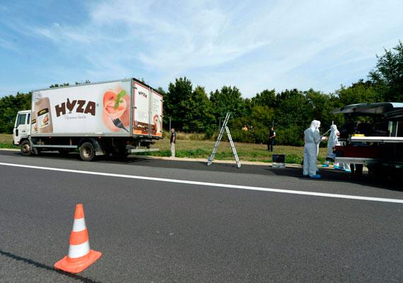 71 menekült holttestére bukkantak csütörtökön az osztrák A4-es autópályán egy magyar rendszámú, de szlovák feliratokkal ellátott teherautóban. A szörnyű tragédia a magyar határtól 30 kilométerre történt. Az áldoztok megfulladhattak a kamion rakterében, és a helyszín leírásából arra lehet következtetni, hogy szörnyű dolgok történhettek a járműben. Kiderült, hogy egy magyar céghez tartozott a teherautó. Az üggyel kapcsolatban négy személyt vettek őrizetbe az osztrák hatóságok még pénteken.