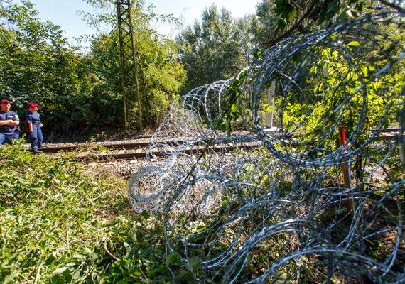 Hiába épült meg a kerítés a magyar-szerb határon, szerdán újabb rekordot döntött az országba érkező menekültek száma, amikor tízezren érkeztek Horvátország felől. Közben tényleg feleslegessé válhat a kerítés, miután a brüsszeli csúcson Orbánnak azt mondta az osztrák kancellár, hogy ha csak kerítéssel tudjuk megállítani a menekülteket, akkor inkább engedje tovább őket Magyarország. A magyar hatóságok állítólag napok óta nem regisztrálnak minden menedékkérőt, ezt már a kormány is elismerte. Brüsszelben megállapodtak arról is a tagállamok vezetői, hogy 1 milliárd euró pluszt szánnak a kérdéssel foglalkozó alapba, és kiemelt partnerségre törekednek például Törökországgal, ahonnan rengeteg menekült indult tovább az elmúlt hónapokban.