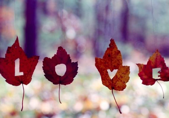 Szerelem ősszel.Kattints ide a nagyobb felbontású képért! »
