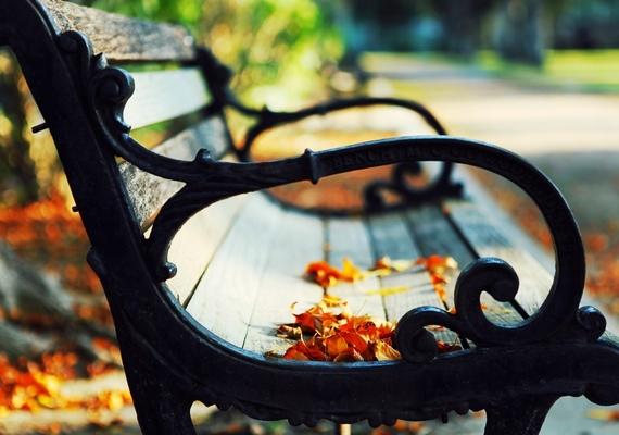 Az őszi romantikázások helyszíne.Kattints ide a nagyobb felbontású képért! »