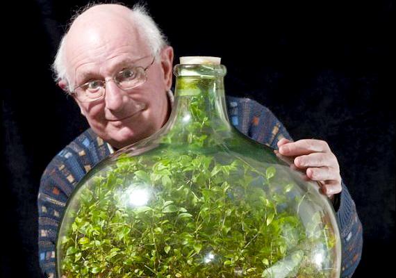 David Latimer növénye saját magának állítja elő a szükséges levegőt és tápanyagokat.