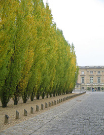 Úton a Petit Trianon felé