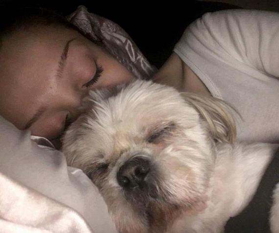 Patai Anna kutyájának, Marcinak bérelt helye van az énekesnő mellett az ágyban.