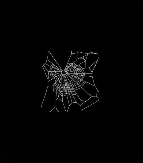 Pók ember fekete macska szex