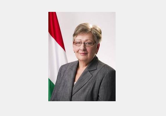 A fideszes képviselő asszony, Németh Lászlóné kizárólag külkereskedelmi szakmai végzettséggel rendelkezik. Jelenleg a nemzeti fejlesztési miniszter posztját tölti be.