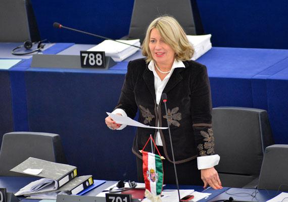 Morvai Krisztina a Jobbik EP-képviselőjeként a hazai politikai életben nincs előtérben, de a Facebookon népes táborral, mintegy 50 ezer követővel büszkélkedhet. Oldala gyakorta frissül, ám ez nem a politikus személyes érdeme, ugyanis a profilját nem saját maga gondozza. A brüsszeli képviselők havonta közel 6,5 millió forintot kapnak arra, hogy asszisztenseket és gyakornokokat alkalmazzanak. Feltehetőleg az egyik munkatársa tájékoztatja a politikus rajongóit.
