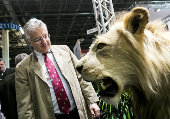 Semjén Zsolt szemügyre veszi a preparált oroszlánt az idei vadászati kiállításon: a BorsOnline cikke szerint gyakran megfordul Gánton, ahol vadászháza van. Rajta kívül Lázár János is ezt a tevékenységet űzi szabadidejében.