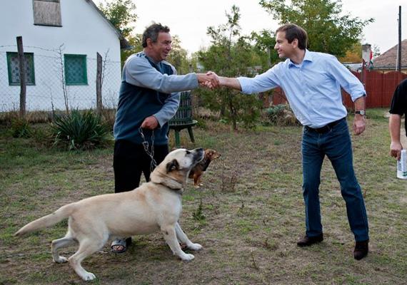 Bajnai Gordonnak csak a felsőteste mozdult, amikor megpillantotta az irányába forduló nagytestű kutyát.