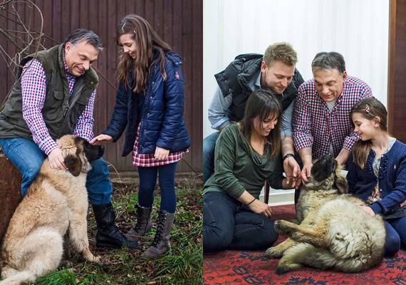 Orbán Viktor volt az úttörő. Nemcsak gyerekekkel, de a kutyával is szívesen pózolt.