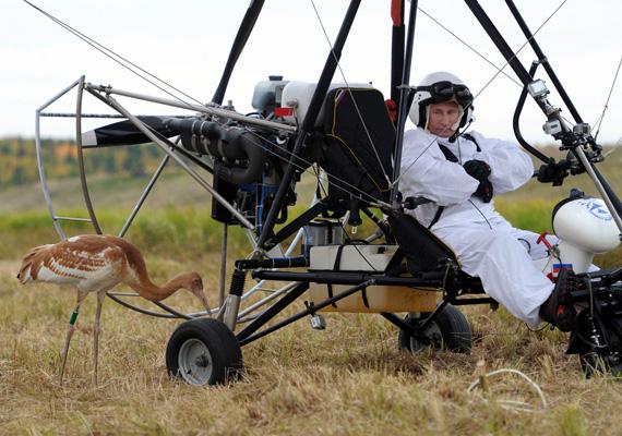 Putyin a képen éppen egy környezetvédelmi repülős programban vesz részt.