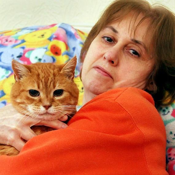 Miután Stephanie hosszú ideig nem tulajdonított jelentőséget a macskái viselkedésének, hat hónap után fogyott egy kicsit, és furcsa dudort vett észre a hasán. Ekkor megértette, mire céloznak kedvencei, és orvoshoz fordult.