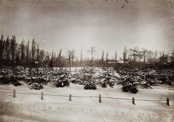 Nem tévedés, ez a fotó is húsvéti, 1898 tavaszán készült a Városligetről.