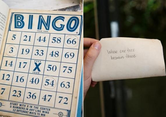 """Az előző tulajdonos valószínűleg valamiféle rejtvénynek szánta a csomagot. A bingó ki volt töltve, a könyvben talált képen pedig ez állt: """"Ahol egy fa hárommá válik."""""""