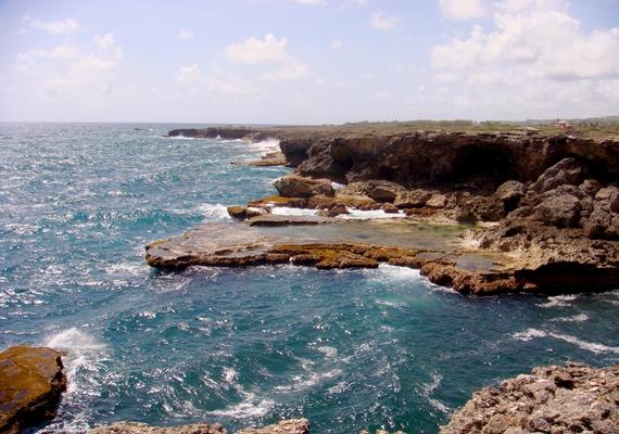 A mangánszőnyeget nem messze Barbados partjaitól fedezték fel.