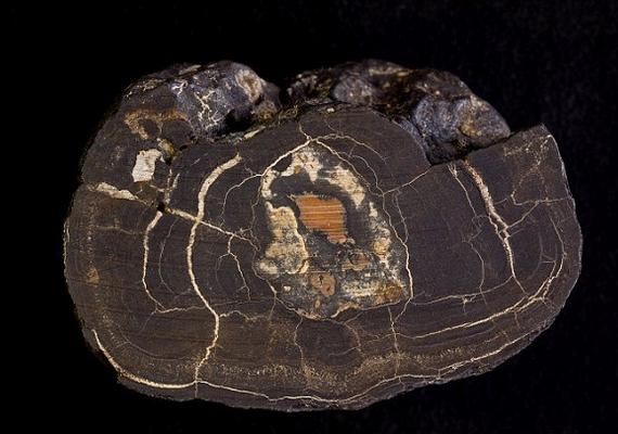 A mangángolyók mélytengeri maradványok kikristályosodásából jönnek létre, és tartalmaznak cinket, rezet, vasat és a kobaltot is.