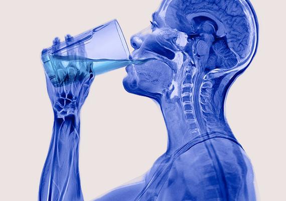 Így néz ki röntgenfotón egy ember ivás közben.