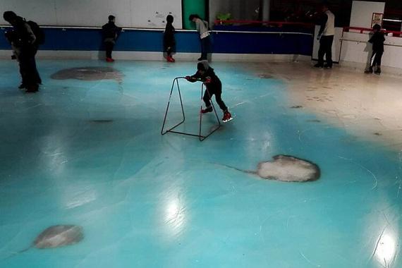 A bizarr jégpálya célja állítólag az lett volna, hogy szórakoztató formában ismertesse a látogatókkal a tengeri élővilágot.