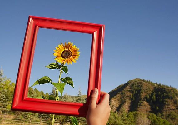 Az olyan képeket, amik magányos embereket vagy tárgyakat ábrázolnak, tedd ki a szobából. Inkább olyan fotókkal, festményekkel díszítsd a falat, amelyek a boldogságot és a szerelmet jelképezik.