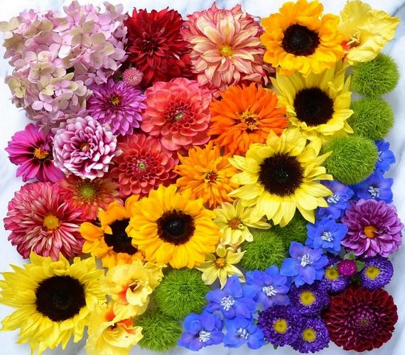Telt színek, gyönyörű virágok, szimmetria - így képzeljük el a tökéletes fotót.