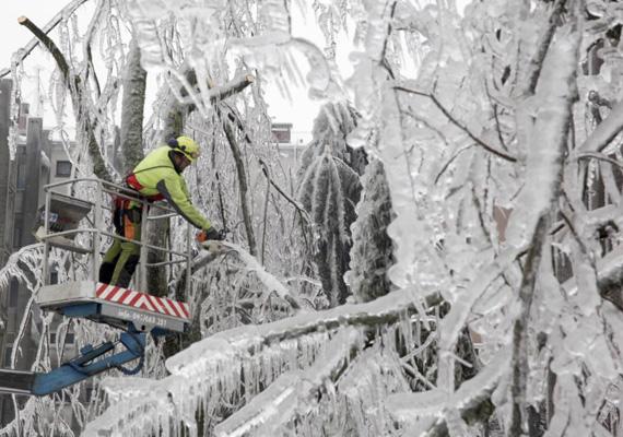 Egy munkás fűrésszel próbálja megszabadítani a fákat a vastag jégtakarótól.