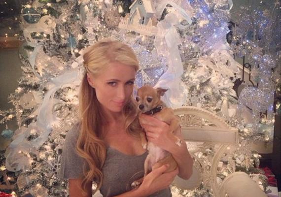 Paris Hilton mindenkin szeretett volna túltenni karácsonyfájával, ezért néz ki az úgy, mint valami téli meseország. Bár giccses is lehetne a sok fehér dísz, valahogy mégis mégis nagyon egyben van az egész.