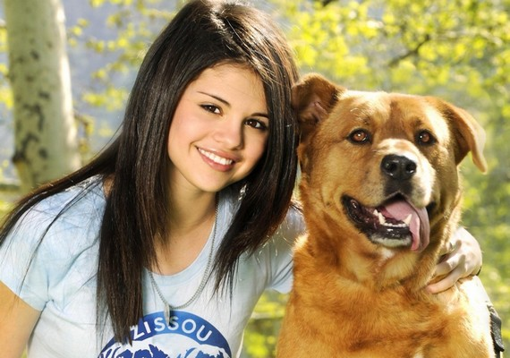 Négy kutyája is van Selena Gomeznek. Chipet egy menhelyről fogadta örökbe.