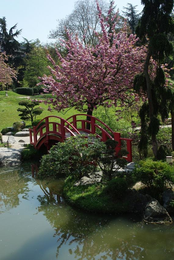 A Jardin Japonais japánkert a város 200 éves botanikus kertje, amely azonban eredetileg nem csak a gyönyörködtetést szolgálta. Az 1800-as években a szegények az itt termő gyógynövényekből is gyűjtögethettek. A napóleoni háborúk idején sajnos az ágyúk tárolására használták, majd az 1900-as évekre kapott ismét parkjelleget. A kertben több műemlék is látható, ezért érdemes valóban végigsétálni rajta.