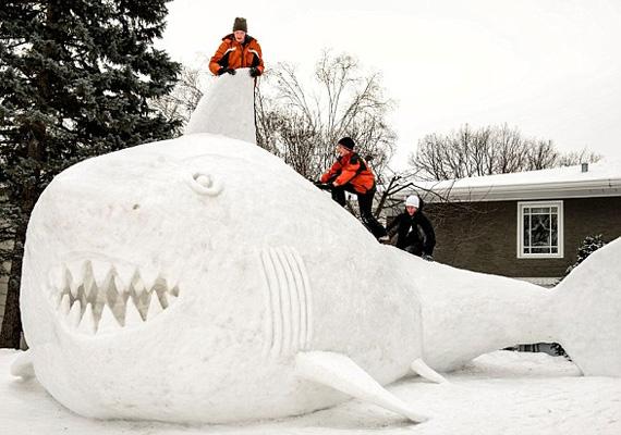 Három minnesotai testvér - kihasználva a havazást - a környékükről összegyűjtött hó segítségével 95 óra alatt építette fel a hatalmas cápát a család kertjében.