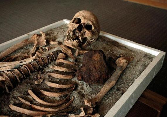A vámpír a koporsójában talált vassal együtt kerül a múzeumba.