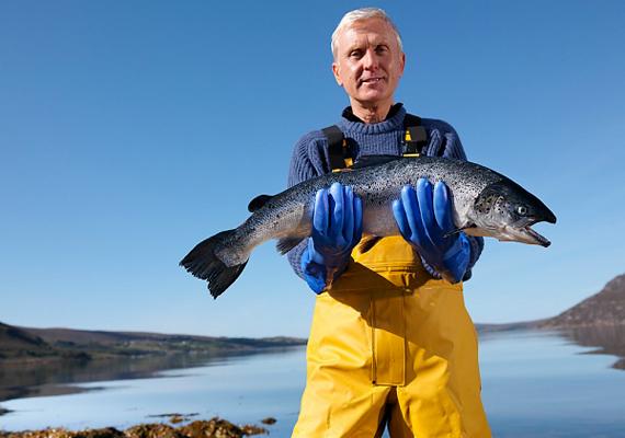 A halászat is a magas baleseti arányok miatt végzett az elsők között.
