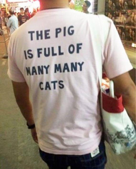 """""""A disznó sok-sok macskával van tele."""""""
