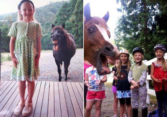 Ki mondta, hogy a lovaknak nincs humora?