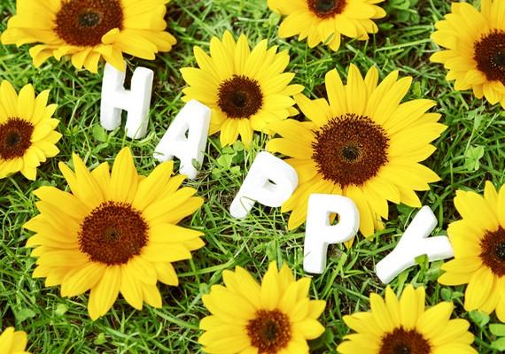 Ha leírva látod, könnyebben érezheted is, hogy boldog vagy.Kattints ide a nagy felbontású képért! »