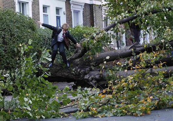 Brit kisfiú próbál eljutni az iskolába átmászva az elemi erejű szél által kidöntött fákon.