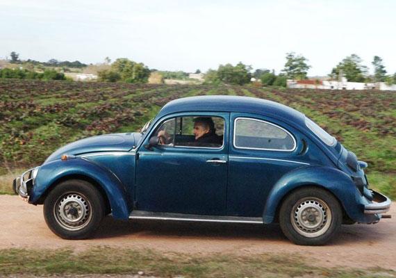 Ezzel az ősi Bogárral ingázik Mujica a háza és a munkahelye között. Állítólag elnöki beiktatását követően azért bővítette gépjárműparkját: vett egy robogót.