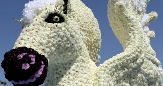 Kufstein vára nekünk hírhedt börtönéről maradt nevezetes. Itt raboskodott Wesselényi Miklós, Kazinczy Ferenc, de még Rózsa Sándor, a híres betyár is. Ausztriában azonban Kufstein az ország legnagyobb virágfesztiváljáról ismert. A virágkocsik mellett egy hatszáz méteres virágszőnyeg is várja az idelátogatókat.