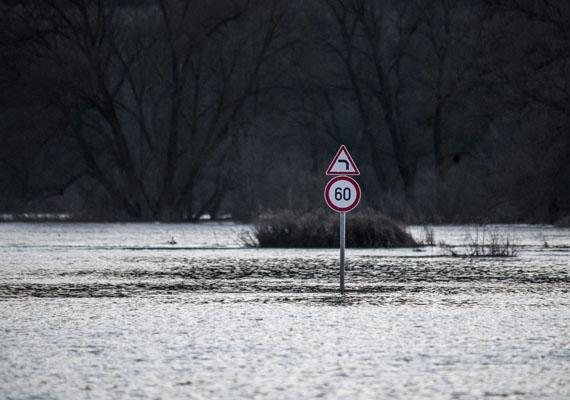 Még mindig a Sajó, ezúttal Putnok határában. A vízből csupán a közlekedési tábla emelkedik ki.