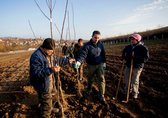 Vona Gábor fát ültet Gyöngyöspatán a helyiekkel. A Jobbik tavaly a melegeket több évig terjedő szabadságvesztéssel, pénzbüntetéssel és elzárással sújtotta volna egy törvényjavaslat szerint.