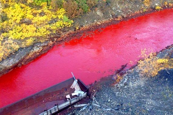 Az orosz természetierőforrás- és ökológiai minisztérium azonban már megtette a megfelelő lépéseket, és vegyi szennyezés miatt indítottak vizsgálatot.