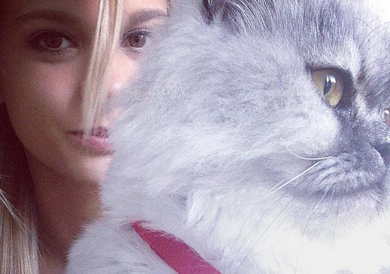 Fanninak van egy macskája is, aki a modell elmondása szerint nemcsak szép, de okos is.