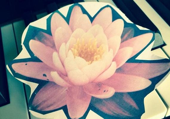 Zayn a hét elején posztolt egy fotót a Twitterre egy papírból kivágott lótuszról. A virág a legtöbb kultúrában a megújulást és a felvilágosodást szimbolizálja, talán az énekessel is ez történt.