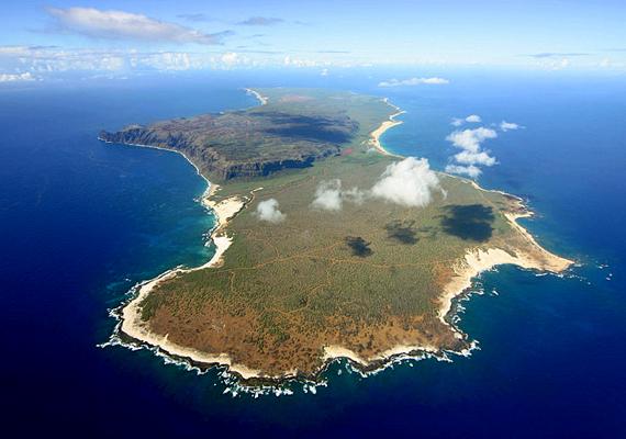 Mikor IV. Kamehameha király a hawaii Niihaut 1863-ban eladta Elizabeth Sinclairnek, utóbbi célul tűzte ki, hogy megőrzi az ősi hawaii kultúrát a területen. Máig nincsenek modern utak és elektromosság a kétszáz lakosú szigeten, és a turizmus is tiltott: a szigetet egyedül a méregdrága és ritka helikopteres túrák során lehet megközelíteni.