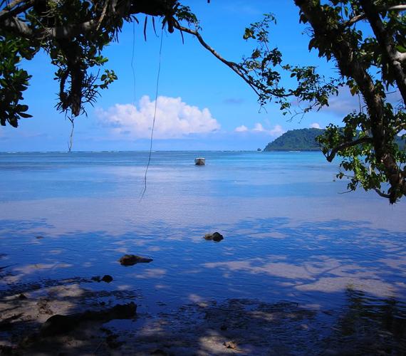 A vulkáni eredetű Salamon-szigetek a Csendes-óceán déli részén helyezkednek el. Szintén süllyednek.